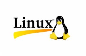 Linux backup and restore